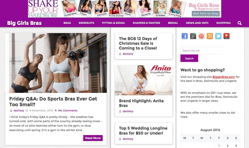 The Big Girls Bras Blog is Back!