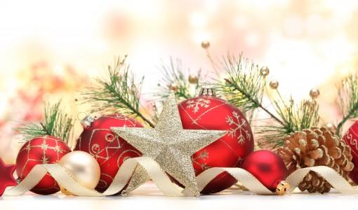 Merry Christmas from Big Girls Bras!