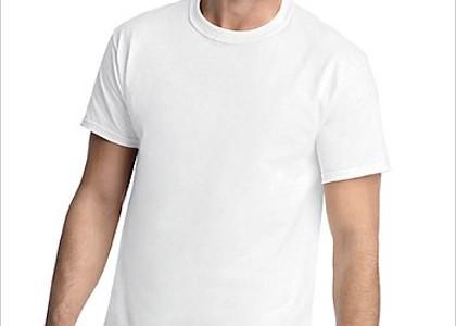 Hanes Classic Mens Crew T-Shirt