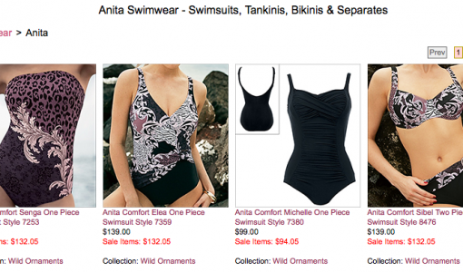Anita Swimwear at Big Girls Bras